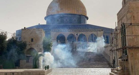 فلسطين تعاني و الدول العربية تحاول من أجل السلام