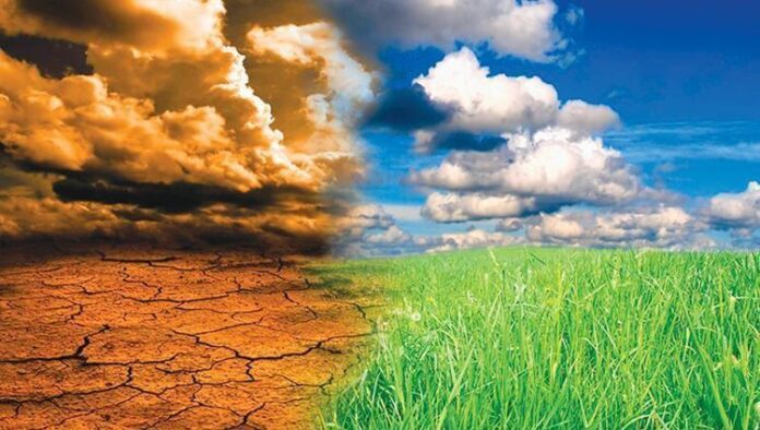 تونس تزرع بذور الأمل ضد تغير المناخ